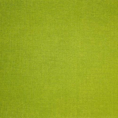 Manteles Plus Individuales Verde Oliva 30x40 cm.
